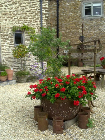 Higher Farm Bed and Breakfast: In the courtyard