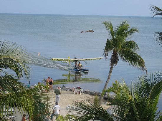 """Days Inn and Suites Key Islamorada: The """"beach"""""""