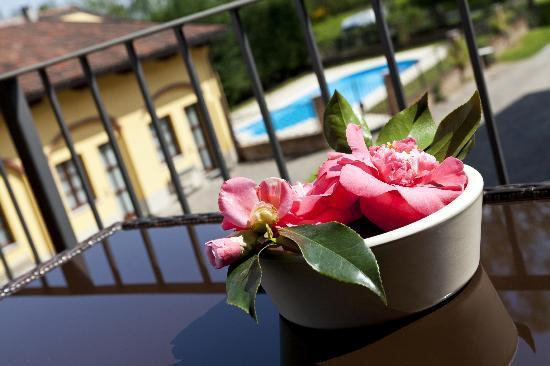 Colleretto Giacosa, Italy: on the balcony, swimming pool sight