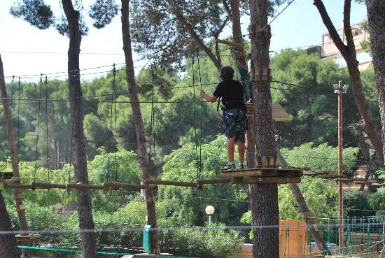 Bosc Aventura Salou: Mi primo en un arbol y yo haciendo la foto desde otro