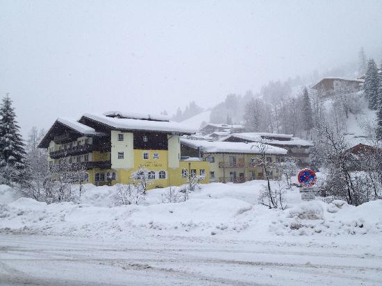 Landhotel Oberdanner: hotel