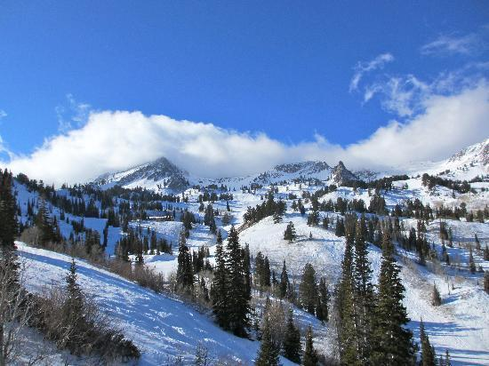 Snowbasin Resort: Taken from the Porcupine Lift, looking up at Powderhound Bowl.