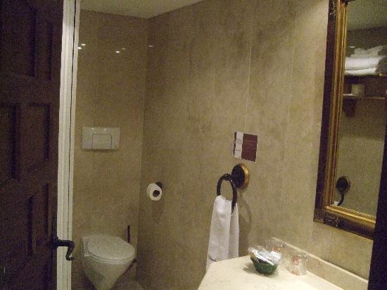 Microtel Placentinos: el baño..