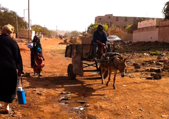 Bamako city centre, market: This is a normal street, and the garbage collector! with donkey !!