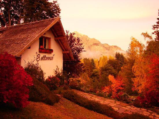 Bellevue Bed & Breakfast 사진