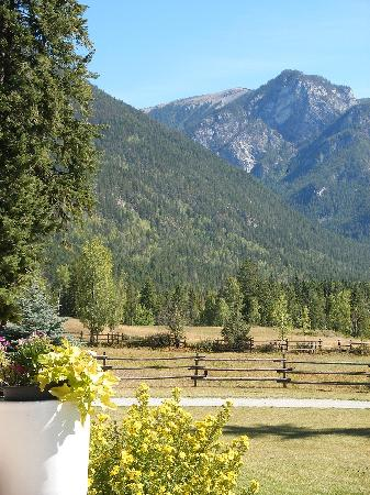 Home Lodge: View from the deck