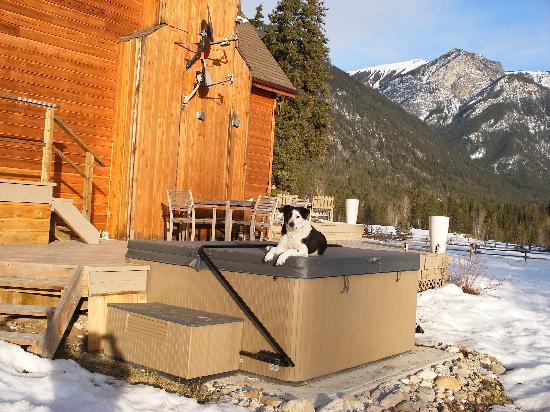 Home Lodge: The Hot Tub