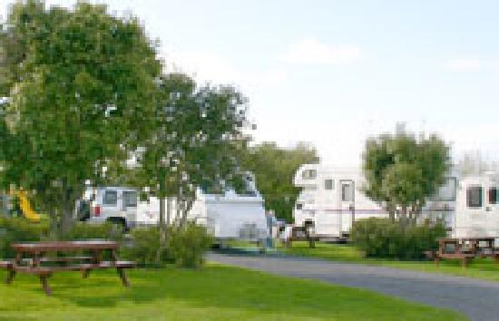 Miranda Holiday Park: Miranda Campervan Park on Auckland - Coromandel highway