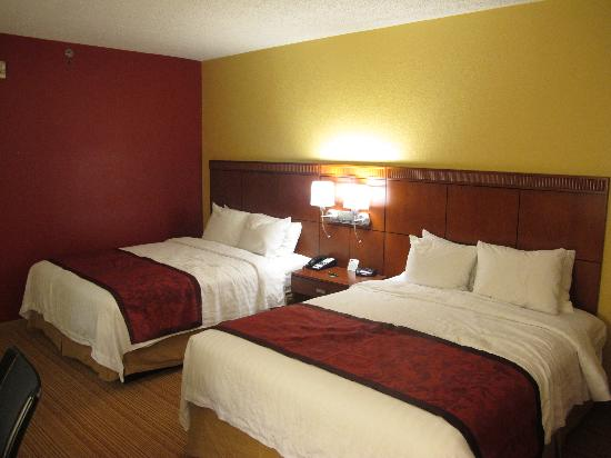 Courtyard Orlando International Drive/Convention Center: Quarto amplo e bem decorado