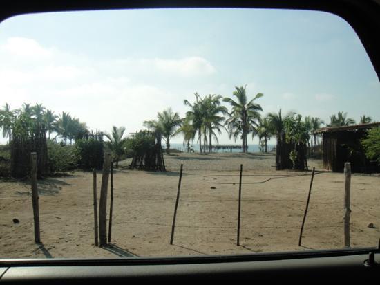 Villa Don Manuel: Palapa en la playa!!
