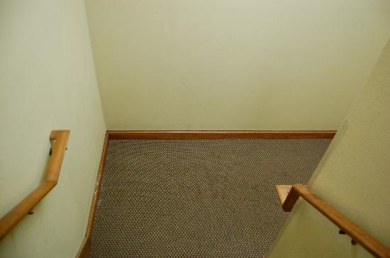Country Inn & Suites By Carlson, Jackson-Airport: The stairs were filthy!!!!