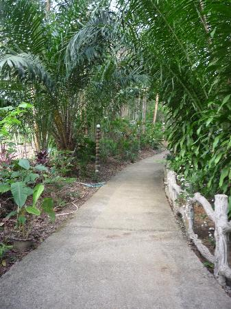 Khao Sok Las Orquideas Resort: Grounds path
