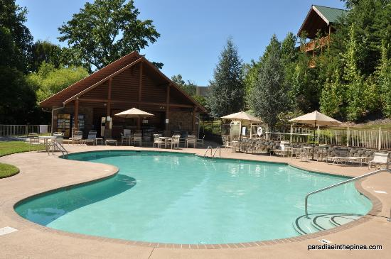 Great property ! Alpine Mountain Chalets - Review of Alpine