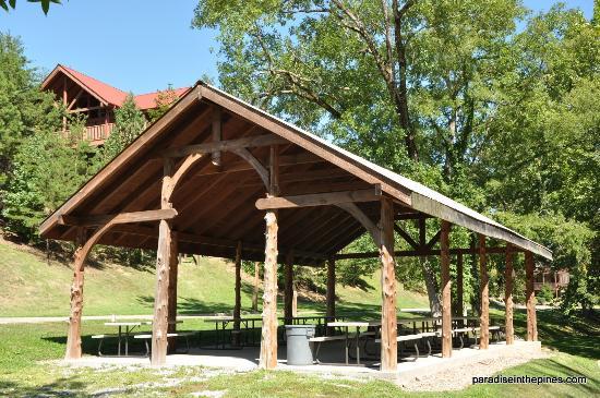 Alpine Mountain Village Resort: Picnic area