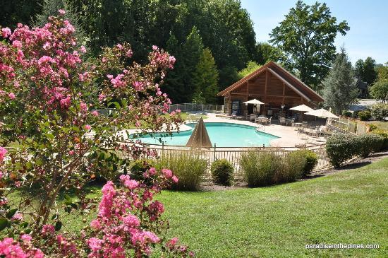 Alpine Mountain Village Resort: Pool and pool house