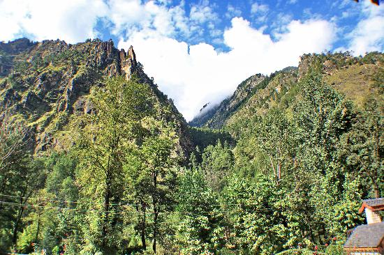 The Himalayan Village : Landscape just opposite Hotel