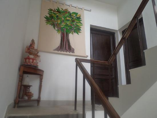 Vatika Guest Home : the stairs