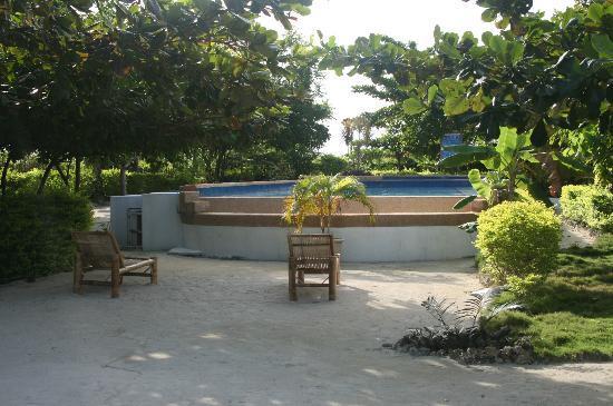 Talima Beach Villas and Dive Resort: Pool
