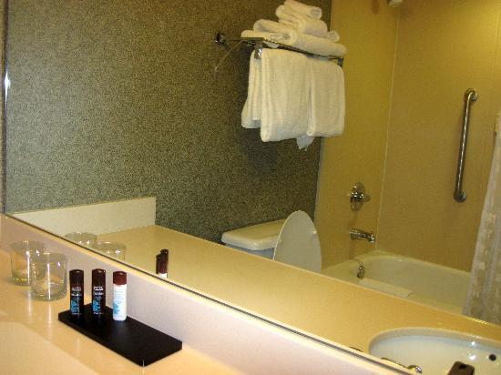 Embassy Suites by Hilton Portland Airport: bathroom