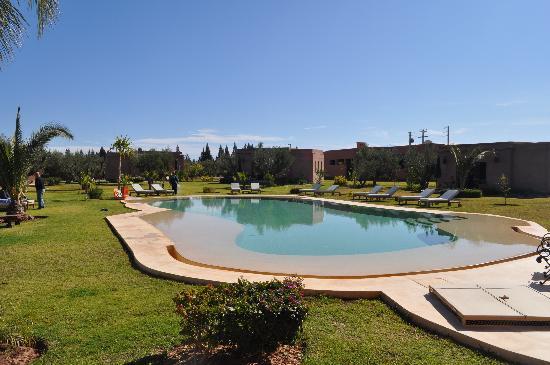 Oasis Jena: La piscine