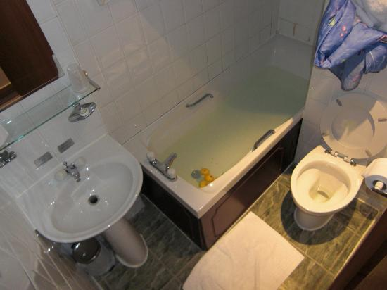Devoncove Hotel Glasgow: decent toilet