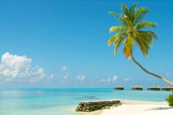 Conrad Maldives Rangali Island: Perfect