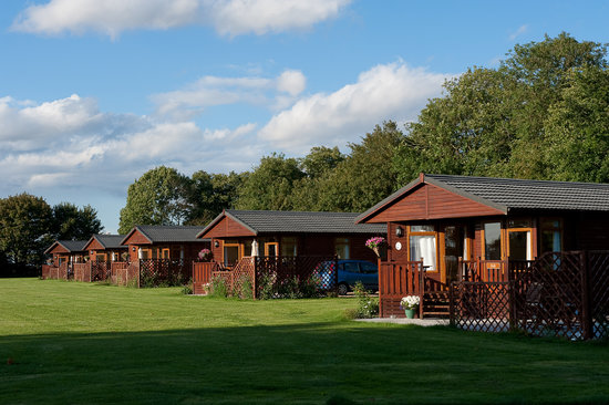 Flies Picture Of Athelington Hall Log Cabin Holidays