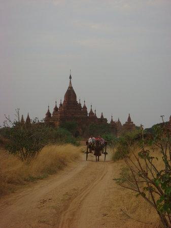 พุกาม, พม่า: bagan3