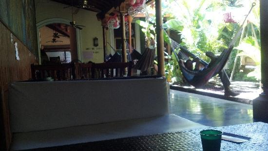 Oasis Backpackers' Hostel Granada: My favorite place to chill and read.