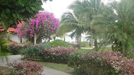 Holiday Villa: the grounds of the resort