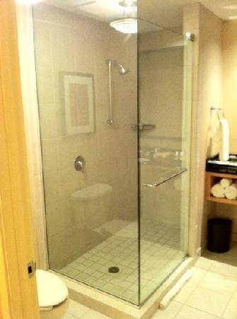 Renaissance Chicago O'Hare Suites Hotel : Nice glass enclosed shower