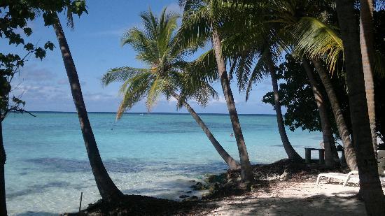 Fihalhohi Island Resort: maldive