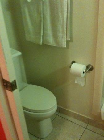 Barefoot Mailman Motel: Toilet