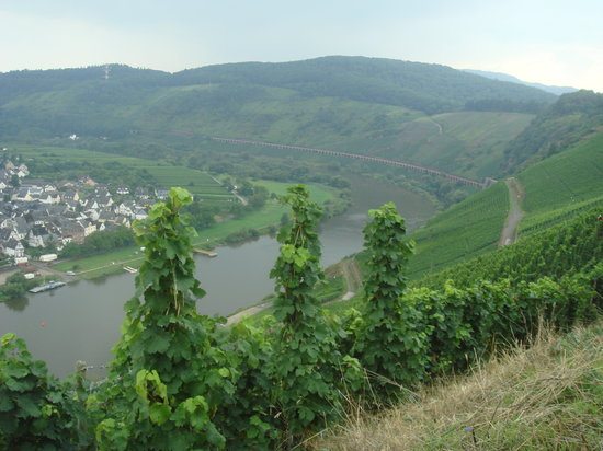 ‪Mosel Valley‬