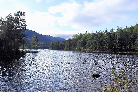 Cairngorms National Park: Start of  Loch An Eilein circular walk