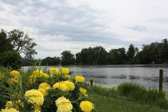 Town of Shenandoah, VA  River Park
