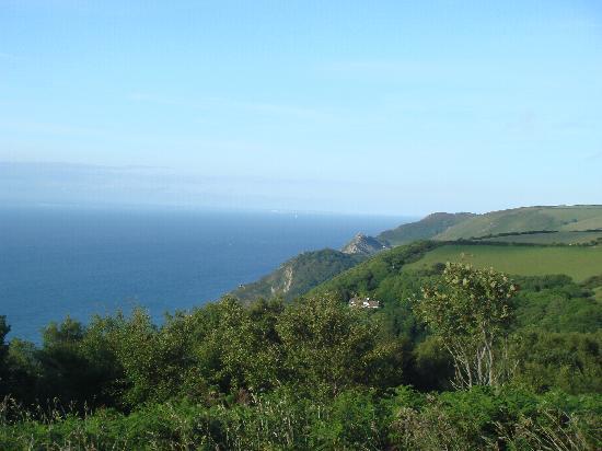 21 Mile Drive: View of Coast