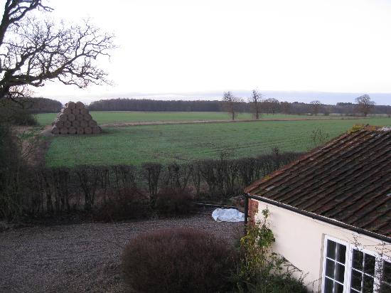 Claxton Hall Cottage B&B : view from claxton