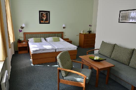 Castle Residence Praha: Standard Double Room