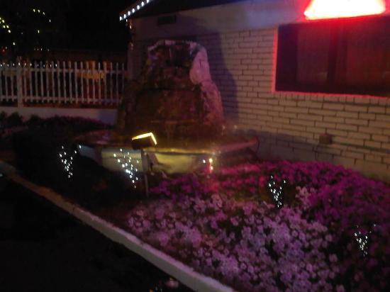 Adobe Hacienda Motel: Little garden area