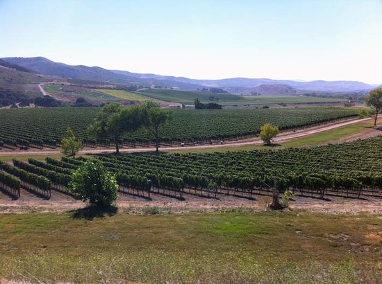 Santa Ynez, CA: A view of the beautiful Santa Rita Hills