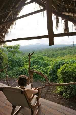 Crater Forest Tented Lodge: Room with a view