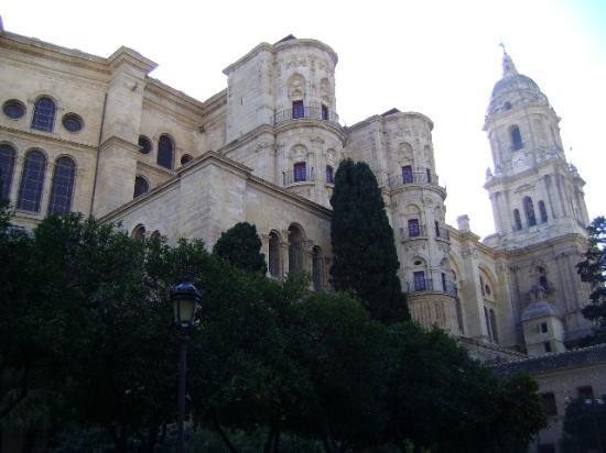 Malaga Cathedral: Catedral de Málaga.