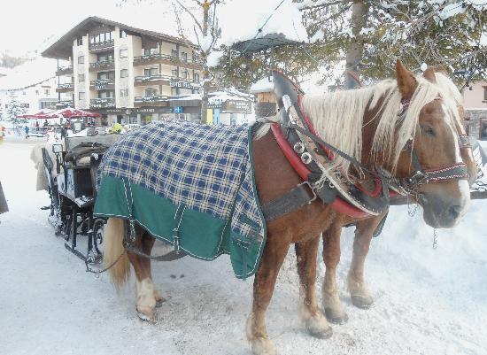 Lech, 17 Jan 2012