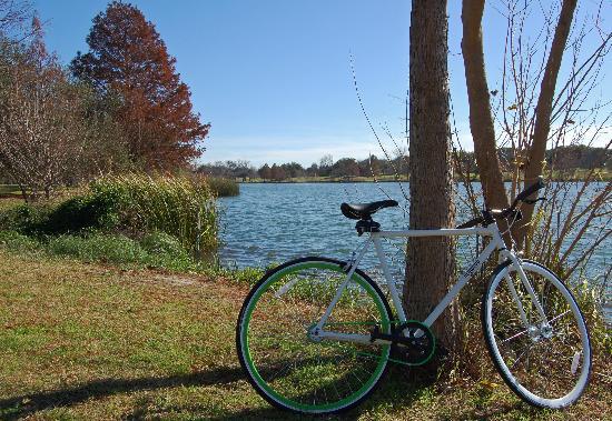 Heywood Hotel: New Year's Eve bike ride on a Heywood custom!