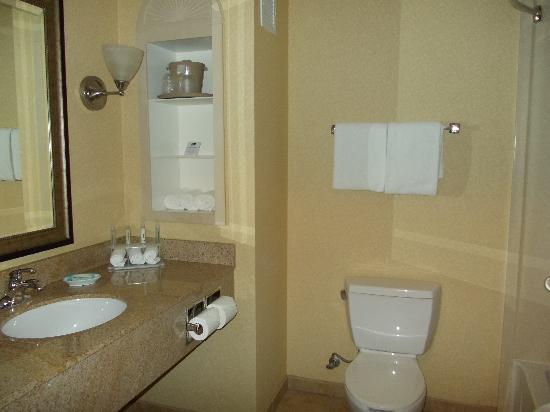 Holiday Inn Express & Suites Ontario Airport: nice bathroom