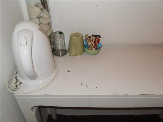 Padi Madi Guest House: Bugs Scurrying across the top of the Desk in Room