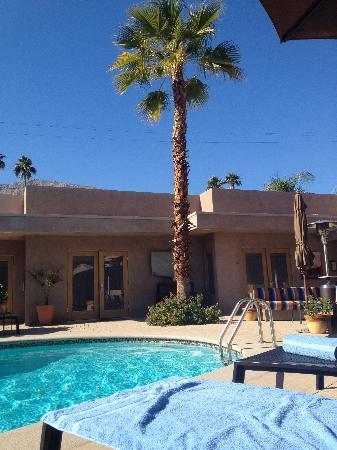 Pura Vida Palm Springs: Pool area
