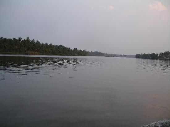 Emarald Pristine Island Floating Resort: View frm boat  on backwater