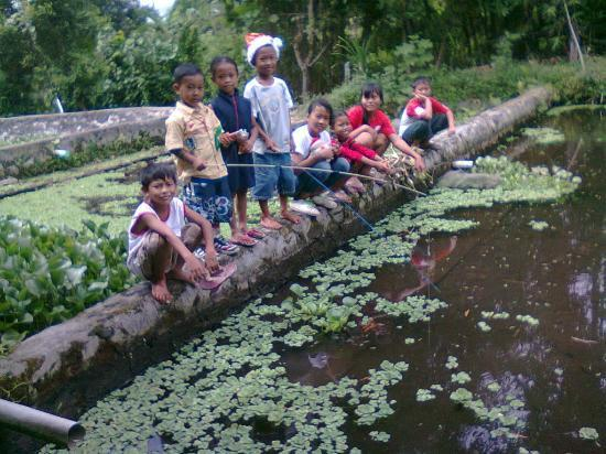Side By Side Organic Farm: Farm kids catching our fresh lunch in a pond dug by  students from HK